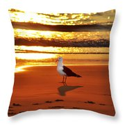 Golden Sunrise Seagull Throw Pillow