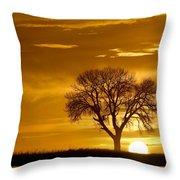 Golden Sunrise Silhouette Throw Pillow