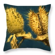 Golden Thistle Throw Pillow