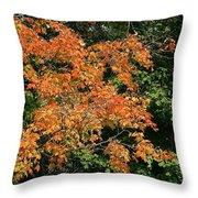 Golden Tree Moment Throw Pillow