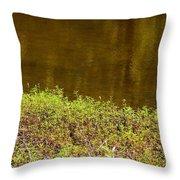 Golden Water's Edge Throw Pillow