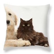 Goldendoodle And Chocolate Cat Throw Pillow