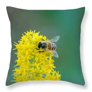 Goldenrod Visitor 3 Throw Pillow