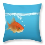 Goldfish Carassius Auratus Throw Pillow