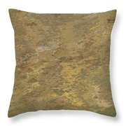 Goldtone Stone Abstract Throw Pillow