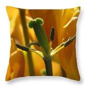 Gone But Not Forgotten Throw Pillow