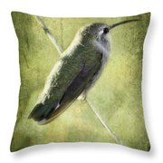 Good Things Come In Small Packages  Throw Pillow