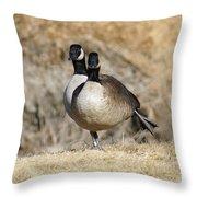 Goose Exercises  Throw Pillow