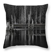 Goose Lake Dusk Throw Pillow