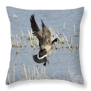 Goose Landing Throw Pillow