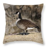 Goose Profile Throw Pillow