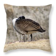 Goose Rubbing Its Back Throw Pillow