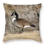 Goose Standing Still Throw Pillow