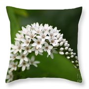 Gooseneck Flowers And Buds Throw Pillow