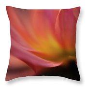 Gorgeous Abstract Throw Pillow