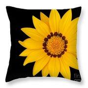 Gorgeous Gazania Throw Pillow