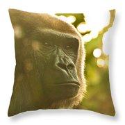 Gorilla At Dusk Throw Pillow