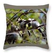 Gossip Birds Throw Pillow