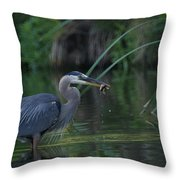 Got It 2 Throw Pillow