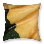 Gourd Green Orange Macro 1 Throw Pillow