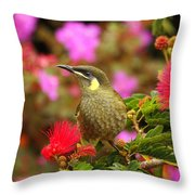 Graceful Honeyeater Throw Pillow
