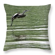 Graceful Landing Throw Pillow