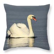 Graceful Moments Throw Pillow