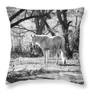 Gracefully Dirty Throw Pillow