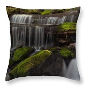 Gracefully Flowing Throw Pillow