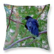 Grackle On A Branch Throw Pillow