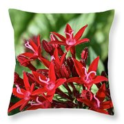 Graffiti Red Lace Throw Pillow