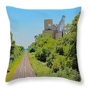 Grain Processing Facility In Shirley Illinois 4 Throw Pillow