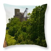 Grain Processing Facility In Shirley Illinois 5 Throw Pillow