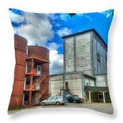 Grain Tower Apartments Throw Pillow