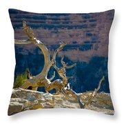 Grand Canyon Dead Tree Throw Pillow