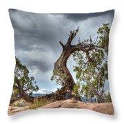 Grand Canyon Facing The Storm Throw Pillow