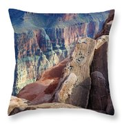 Grand Canyon Roxie Roller Throw Pillow