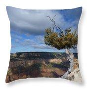 Grand Canyon Struggling Tree Throw Pillow
