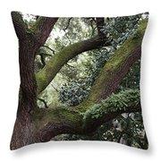 Grand Dame Of Savannah Throw Pillow