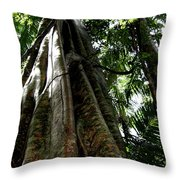 Grand Old Lady Throw Pillow