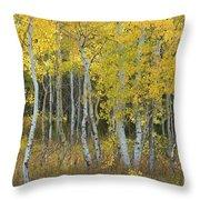 Grand Teton Aspens Throw Pillow