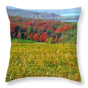 Grand Traverse Winery In Autumn Throw Pillow