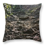 Grandfather's Trail Throw Pillow