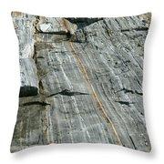 Granite With Quartz Inclusions Throw Pillow