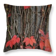 Grape Leaves On Column Throw Pillow