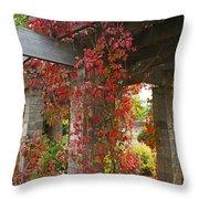Grape Leaves On Columns Throw Pillow