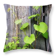 Grape Vines On An Old Barn Throw Pillow