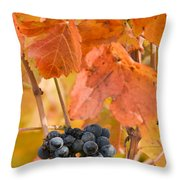 Grapes On The Vine - Vertical Throw Pillow
