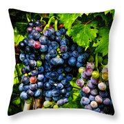 Grapes Ready For Harves Throw Pillow