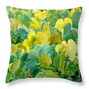 Grapevines In Azores Islands Throw Pillow